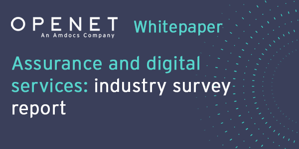 Assurance and digital services – industry survey report