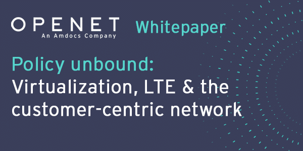 Policy unbound: Virtualization, LTE & the customer-centric network