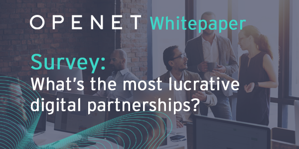 Survey Paper: What types of partnerships will be the most lucrative?