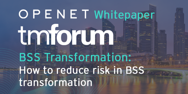 How to reduce risk in BSS transformation